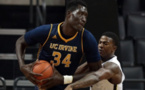 Basketball : Mamadou N'diaye rejoint les Golden State Warriors