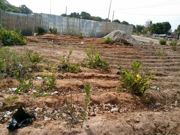Spoliation foncière : L'ancien député Abdou Sané appelle à un profond audit du foncier à Ziguinchor