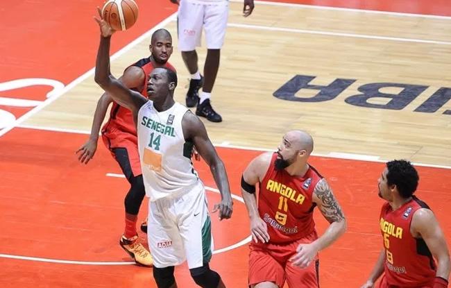BasketBall-CM 2019 : Le Sénégal accueillera des éliminatoires