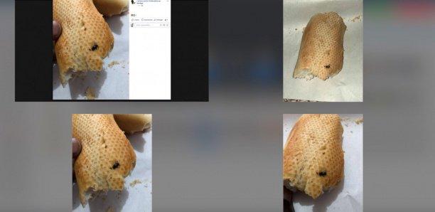 Brioche Dorée : Ici, on sert du pain avec des mouches cuites
