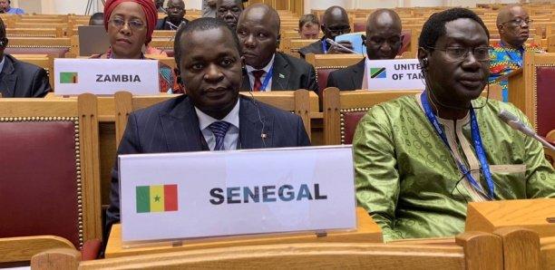 OMT: Le Sénégal élu au Conseil Exécutif et au comité du Tourisme et de la compétitivité