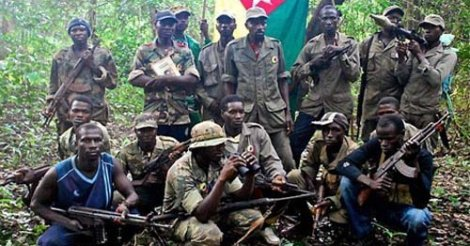 Paix en Casamance: Le Comité des droits de l'Homme des Nations Unies fait des recommandations au Sénégal