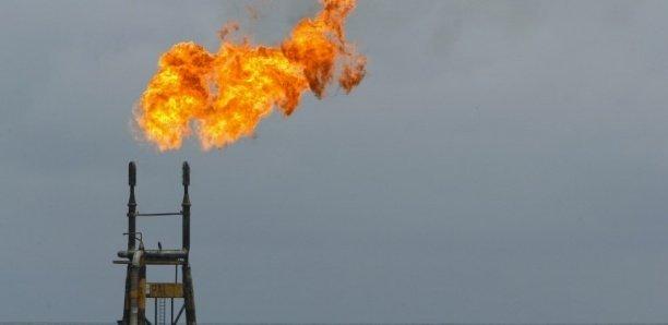 Phase 1 projet pétrolier Sangomar : 230 millions de barils de pétrole brut attendus