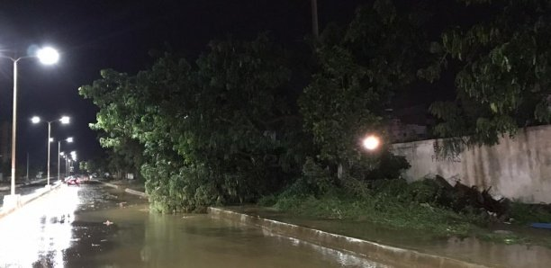Premières pluies à Dakar : 1 mort, 3 personnes électrocutées…