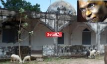 Détournement des 10 millions destinés à la réfection de la grande mosquée de Kolda