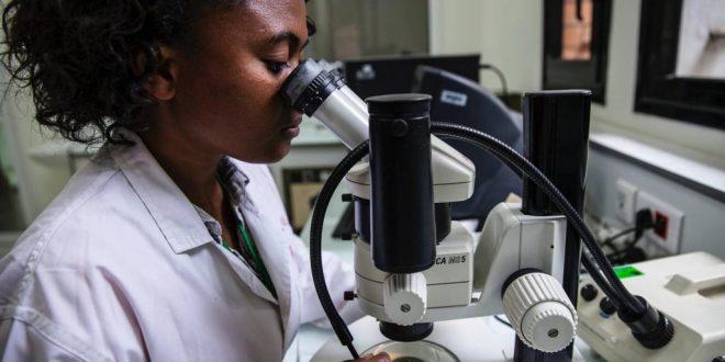 Epidémie de peste à Madagascar: comment se protéger de la maladie?