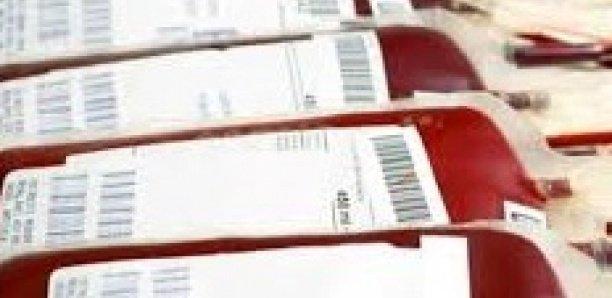 Matam : 85 poches de sang collectés pour l'hopital régional
