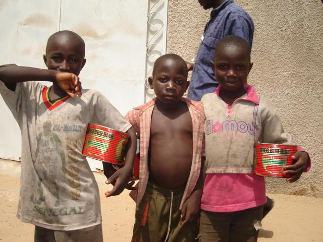 """Sénégal : Human Rights Watch dénonce les """"énormes souffrances"""" des enfants talibés"""