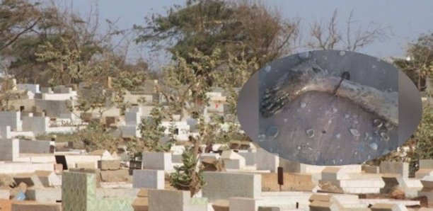 Cimetière Dangou de Rufisque : Une jambe humaine découverte sur une tombe
