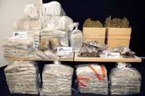 Arrestation agitée de trafiquants de drogue à Ngor: 2 Kg retrouvés chez un ASP, un élément du Gir entre la vie et la mort