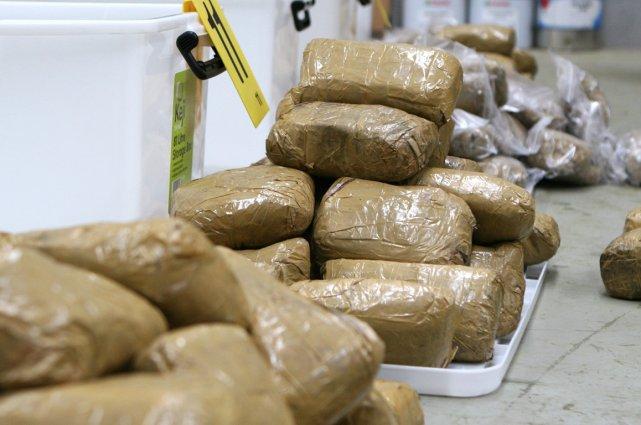 """Saisie de drogue au port : Quand des """"agents de transit"""" servent de mules aux trafiquants, les « transitaires » mis en cause excommuniés"""