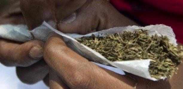 Détention de drogue : Un militaire en service arrêté avec 9kg de chanvre indien.