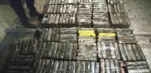 Koungheul : La douane saisit 1 tonne 776 kg de chanvre indien d'une valeur de 106 millions Cfa