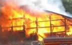 Incendie Ngoye : Une vingtaine de concessions réduites en cendres