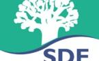 CONTRAT D'AFFERMAGE: Les cadres de la Sde appellent les autorités «à la clairvoyance»