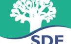 Abdoul Ball sur l'avenir de la SDE: « nous continuerons d'exister même si le contrat est adjugé à Suez »