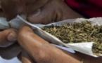 TRAFIC DE CHANVRE INDIEN A TOUBA : Un cordonnier tombe avec plus de 1Kg en plein jour