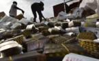 Foundiougne : 165 millions en faux médicaments saisis
